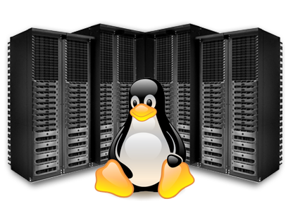 Website Hosting, Linux Hosting, PHP Hosting, WordPress Hosting at Web Expanders